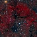 IC1396-2018,                                Bob J
