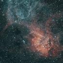 Lion Nebula (SH2-132),                                John Sim