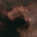 NGC 7000,                                Frank Nelson