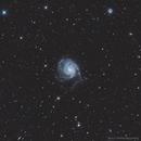 M101 Pinwheel Galaxy,                                tbcgeorge