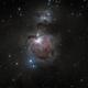 Orion Nebula,                                Richard Sweeney