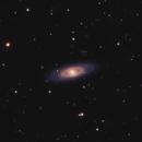 NGC 4274 Galaxy Group - Cropped,                                Kurt Zeppetello