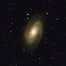M81 - Bodes galaxy,                                Daniel