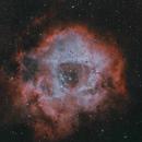 Rosette nebula HOO,                                Andreas Zeinert