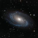 M81 - Bode's Galaxy,                                Carlo Caligiuri