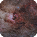 North America and Pelican Nebula, Sadr region,                                Die Launische Diva