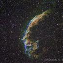 NGC6992 alias Eastern Veil,                                Riccardo A. Ballerini