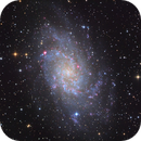 M33 - Triangulum Galaxy,                                Samuli Vuorinen