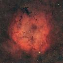IC1396A,                                Philippe BERNHARD