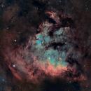 NGC7822 in SHO,                                Prath Pavaskar