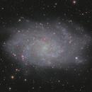 M33 - HaLRGB,                                Philipp Müller