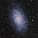 M33 Triangulum Galaxy, HyperStar11 and ASI533MC,                                tjm8874