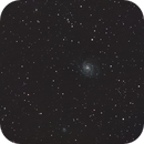 M101 - Fast exposures with Samyang 135,                                Ben