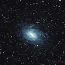 NGC 6744 Gx Pavo,                                Ricardo Barbosa