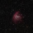 NGC 281 - Pacman nebula,                                DerPit