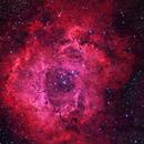 Rosette Nebula,                                JM