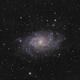 M33 Triangulum Galaxy,                                Kevin Knapp