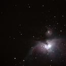 Orion nebula,                                Tolo Matas