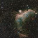 Seagull Nebula - IC 2177,                                Jim Matzger