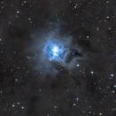 NGC 7023,                                Michael Völker