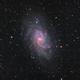 Messier 33,                                regis83