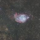 Lagoon Nebula,                                Wilmari