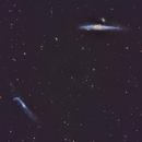 Crowbar(NGC4656) and Whale(NGC4631) Galaxy Pair,                                Michael Broyles