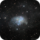 The Topsy Turvy Galaxy—NGC 1313,                                Russ Carpenter