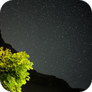 Stars behind the mountains, mountains behind the tree,                                Paolo Manicardi