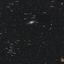 Ngc7331 & Stephan's Quintet,                                H-x6