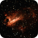 M17 from Oregon Star Party,                                Pat Hanrahan