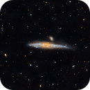 The Whale Galaxy NGC4631,                                Sean McCully