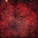 IC1396 Region (Elephant's Trunk nebula),                                nmac