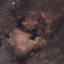 NGC7000,                                Thibault