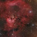 NGC 7822 Emissionsnebel,                                Horst Twele
