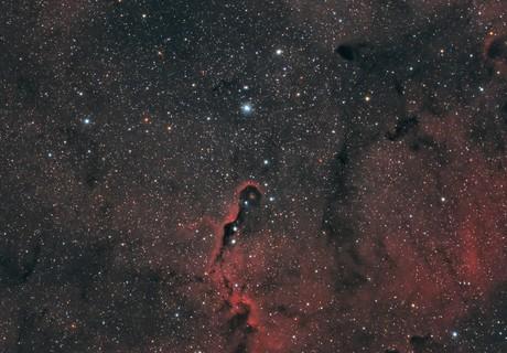 IC 1396 The Elephant Trunk Nebula,                                Elmiko