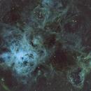 NGC 2070,                                Johnyb2