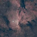 C82: NGC6188 and NGC6193,                                Guillermo (Guy) Yanez