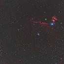 Horsehead Nebula,                                Alan_Beech