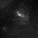NGC 7635 NEBULEUSE DE LA BULLE,                                BADER Nicolas