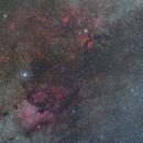 Cygnus from Pancolar 50/1.8,                                Sebastian Ś