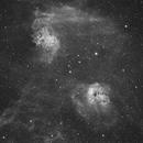 IC410 and IC405,                                Turki Alamri