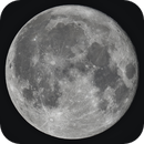 Moon near full,                                Siegfried