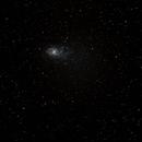 Triangulum M33,                                Miles Chatterji