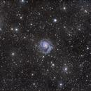 M101 and stuff around,                                Mark