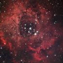 Rosette Nebula,                                Orestis Pavlou