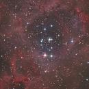 Nebulosa Rosetta,                                LucaCL