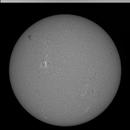 Sun in Ha 6-18-21,                                Alan