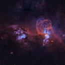 Statue of Liberty Nebula (NGC 3576),                                EmuHead