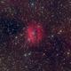 Coffee Bean Nebula (RCW 98),                                Brian Peterson